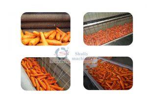 brush-carrot-cleaning-machine