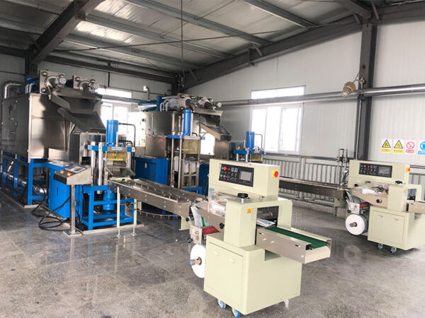 dry ice processing plant manufacturer