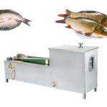 fish belly cutting machine