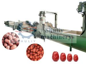 industrial date palm processing machine