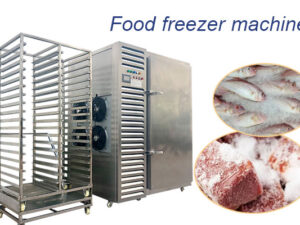 industrial meat freezer