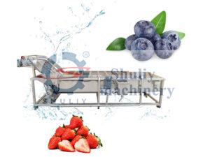 industrial strawberry&blueberry washing machine