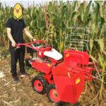 manual corn harvester