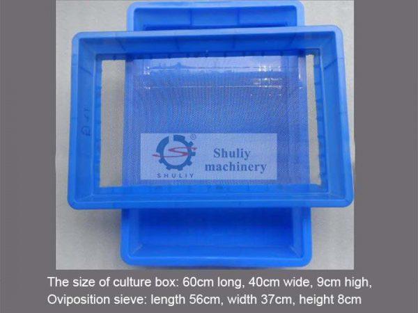 mealworm screening sieve