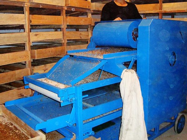 mealworm sorting machine in work