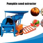 pumpkin seed extractor