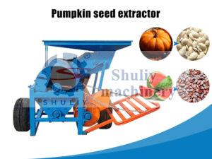 pumpkin seed extractor