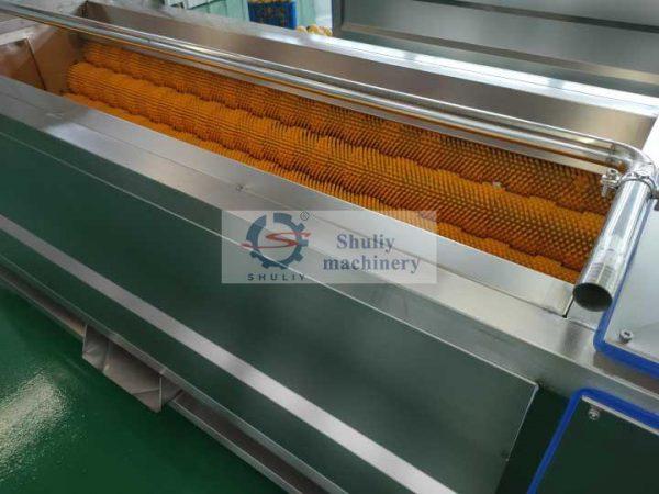 stainless-steel-carrot-washing-machine