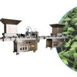 vegetable nursery sowing machine