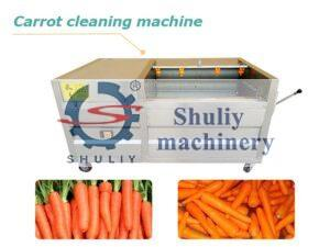 carrot cleaning machine