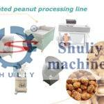 coated peanut processing line