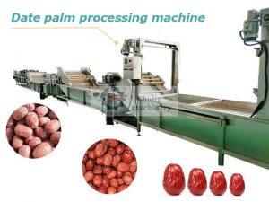 industrial date palm processing machine