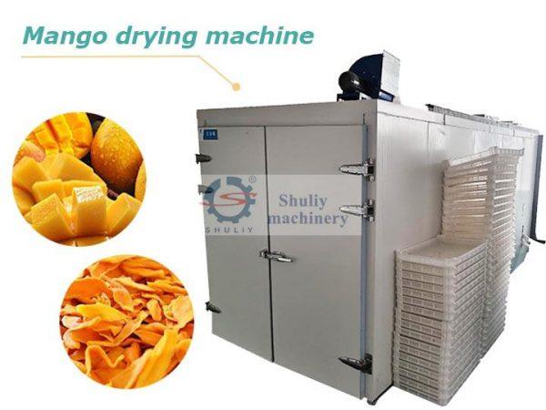 mango drying machine