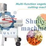 multi-functional vegetable cutting machine