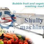 vegetable fruit washing machine